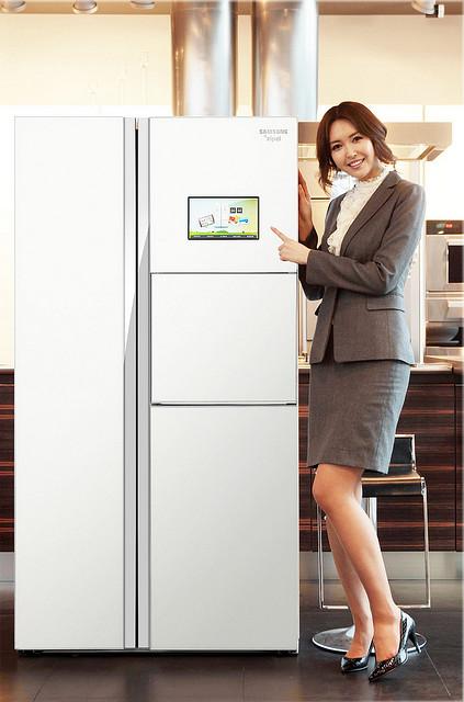 выбрать холодильник самсунг Стандартный холодильник Самсунг для дома – как правильно выбрать и не разочароваться в покупке Zipel e Diary