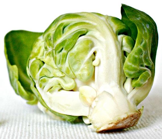 как правильно хранить брюссельскую капусту Брюссельская капуста brussels sprouts 3