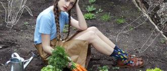 как хранить морковку  Как хранить утиные яйца для инкубации 14603615217 b6f9a7cdc2 z 330x140