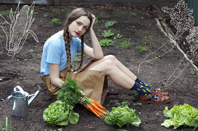 как хранить морковку Как хранить морковь Морковь 14603615217 b6f9a7cdc2 z