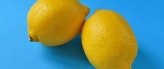 Как хранить лимон: все способы в вопросах и ответах Как хранить лимон Как хранить лимон: все способы в вопросах и ответах kak hranit lemon 330x140