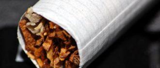 Сигареты Срок годности сигарет Сигареты kak hranit sigarety 330x140