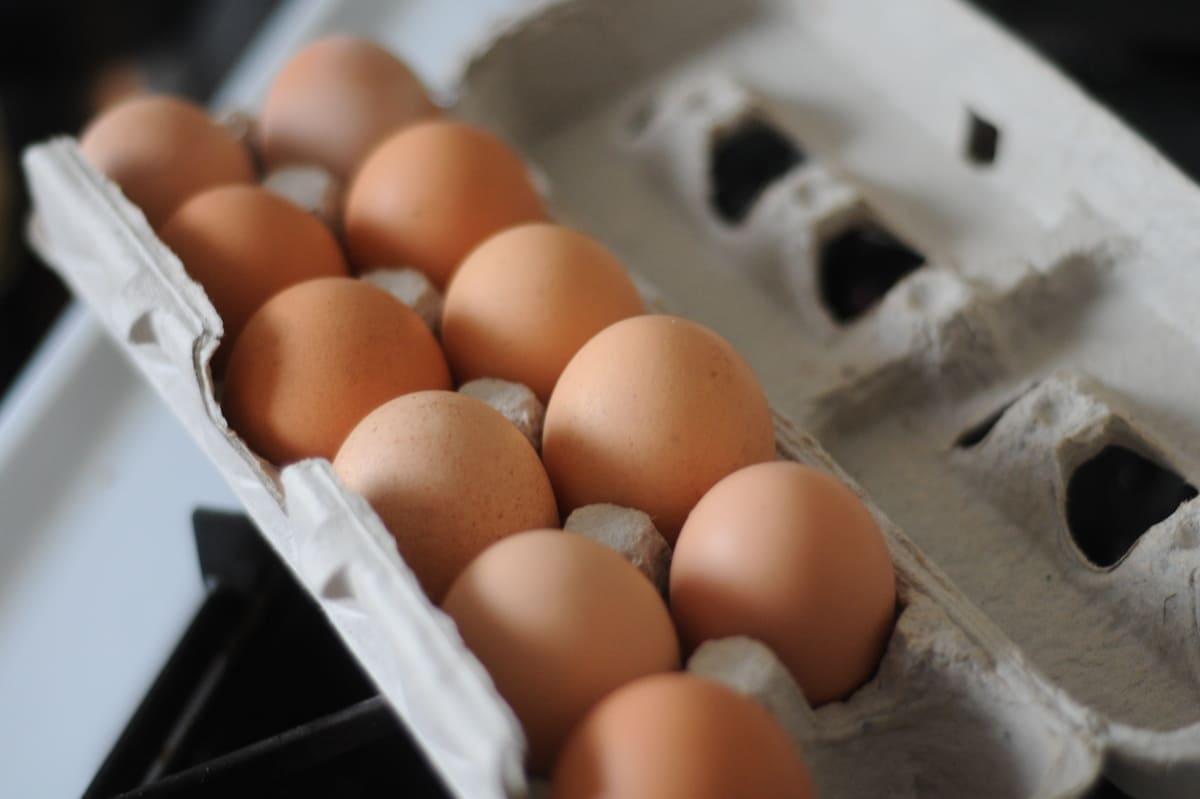Срок годности яиц курицы как хранить яйца Яйца kurinnye yaitsa kak hranit srok godnosti