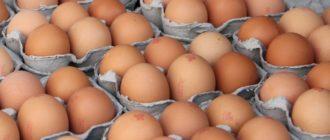 как хранить яйца курицы в холодильнике  Топинамбур kurinnye yaitsa kak hranit v holodilnike 330x140