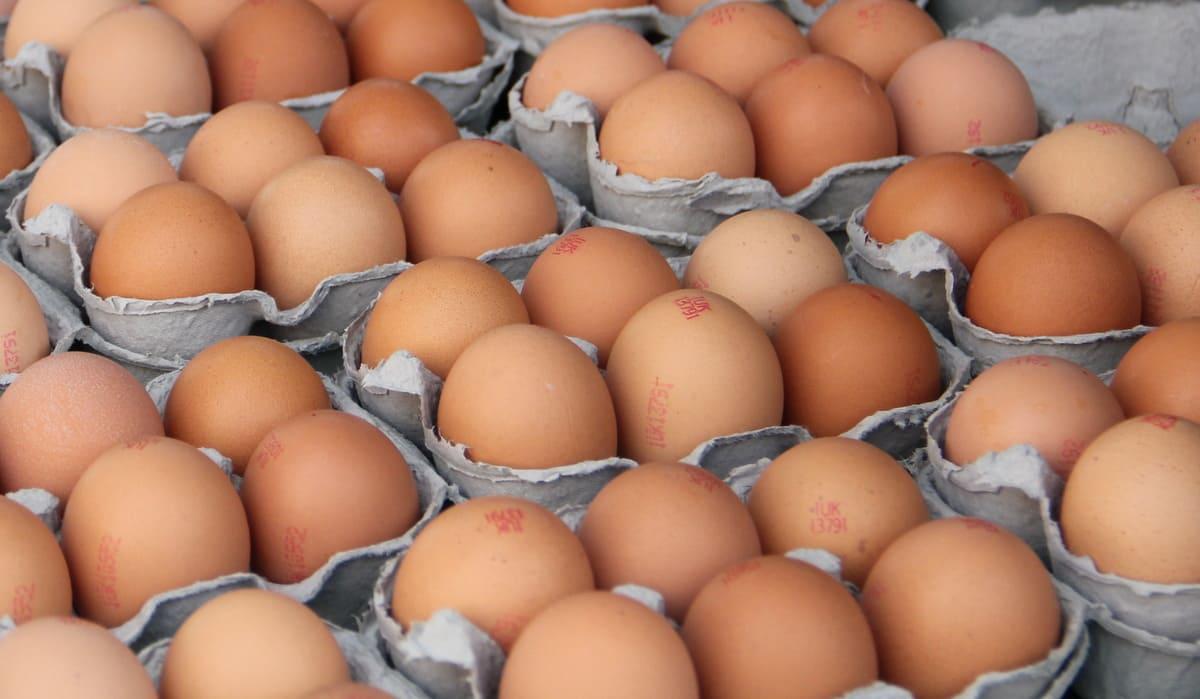 как хранить яйца курицы в холодильнике как хранить яйца Яйца kurinnye yaitsa kak hranit v holodilnike