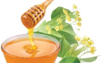 Условия хранения и срок годности мёда  Главная IMG 0999 400x250