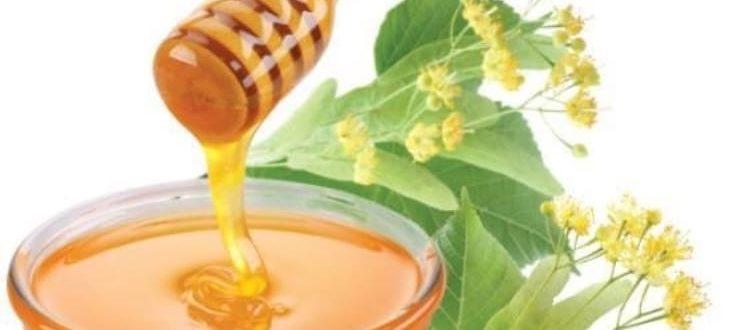 Срок хранения мёда в стеклянной таре Условия хранения и срок годности мёда IMG 0999 750x330