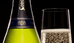 Срок годности шампанского Сроки хранения замороженных мясных полуфабрикатов Сроки хранения замороженных мясных полуфабрикатов champagne 238x140