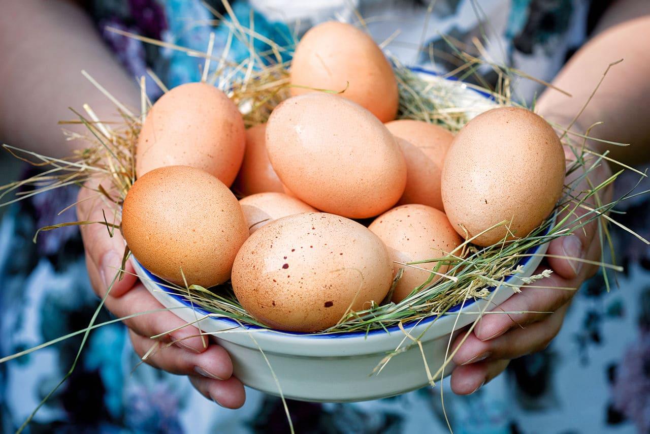 Как хранить домашние куриные яйца Срок хранения домашних куриных яиц в холодильнике Домашние куриные яйца domashnie kurinnye yaitsa kak hranit