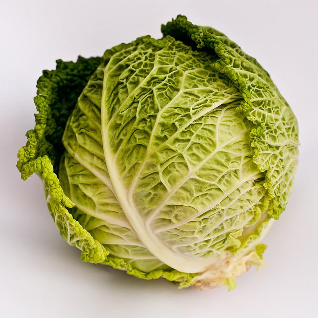 Савойская капуста Савойская капуста: выращивание и уход savoy cabbage