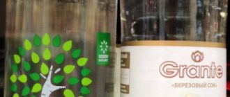 срок годности березового сока  Редис birch sap e1434889489473 330x140