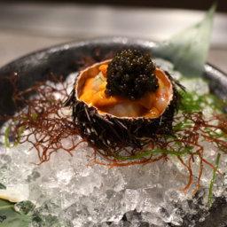 хранение икры морского ежа как сохранить икру морского ежа Как хранить икру морского ежа caviar sea urchin 256x256