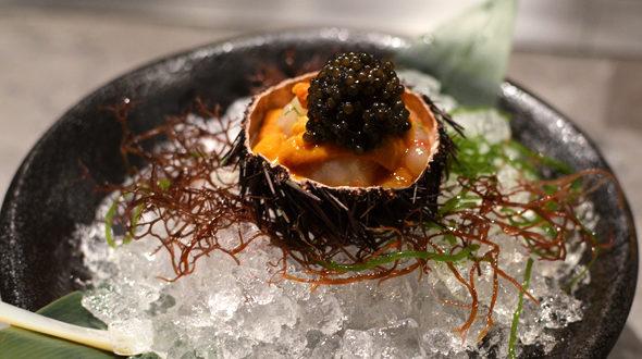 хранение икры морского ежа как сохранить икру морского ежа Как хранить икру морского ежа caviar sea urchin 590x330