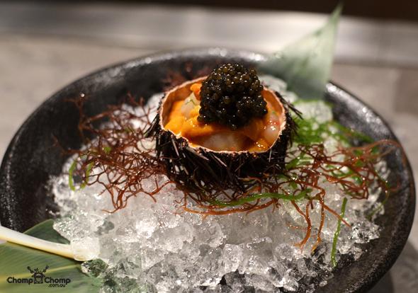 хранение икры морского ежа как сохранить икру морского ежа Как хранить икру морского ежа caviar sea urchin