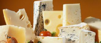 Сыр  Сыр kak hranit syr 330x140