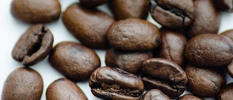 Кофе kak hranit kofe 2 770x330