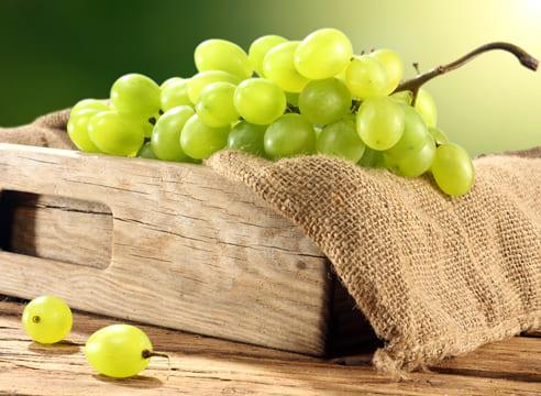 Виноград  Виноград kak hranit vinograd