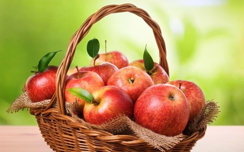 хранить яблоки Как сохранить яблоки и защитить яблони kak hranit yabloki