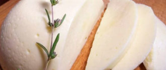 Адыгейский сыр kak hranit adygeyskii syr 330x140