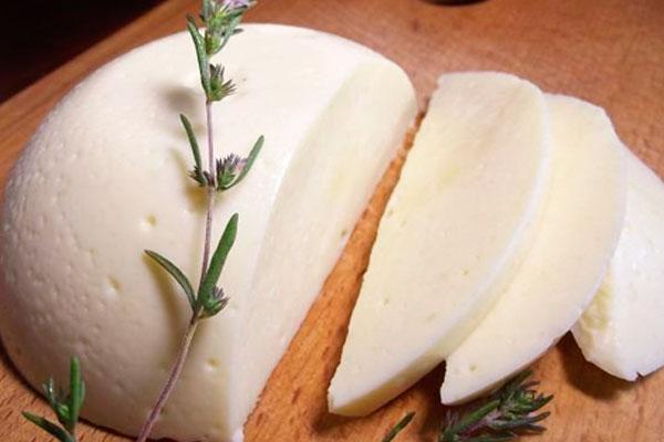 Адыгейский сыр  Адыгейский сыр kak hranit adygeyskii syr