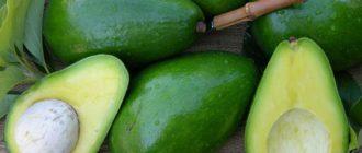 как хранить авокадо  Детское пюре kak hranit avokado 330x140