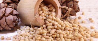 Как хранить кедровые орехи  Фундук kak hranit kedrovye orehi 330x140