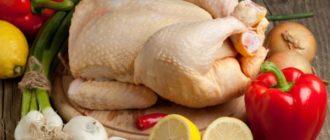 Как хранить курицу  Курица kak hranit kuritsu 330x140