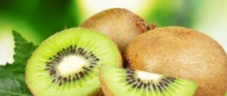 Киви  Киви kak hranit kiwi 330x140