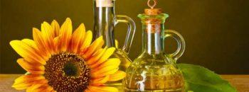 Как хранить подсолнечное масло  Подсолнечное масло kak hranit podsolnechnoe maslo 350x130