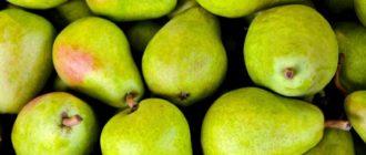 Как хранить груши  Как хранить груши kak hranit grushi 330x140