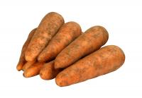 Как хранить овощи  Главная morkov