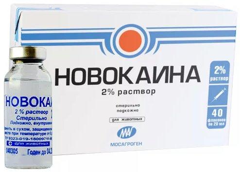 Новокаин  Новокаин kak hranit novokain