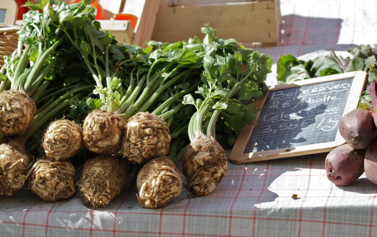 Как хранить морковь Морковь selderey kornevoy kak hranit