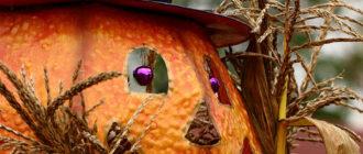 Сушка декоративной тыквы  Сушка декоративной тыквы tykva decorativnaya hranenie 330x140