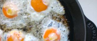Срок хранения жареных яиц  Срок хранения жареных яиц srok hraneniya zharenyh yaits 330x140