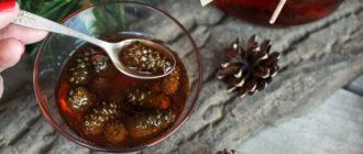 Как хранить варенье из сосновых шишек  Как хранить варенье из сосновых шишек varenje sosnovye shishki kak hranit 330x140