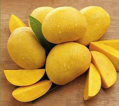 Как хранить манго  Как хранить манго 02 mango kak hranit