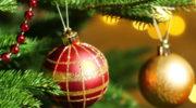 как хранить новогоднюю живую елку  Как хранить новогоднюю елку novogodnyaya elka kak hranit 180x100
