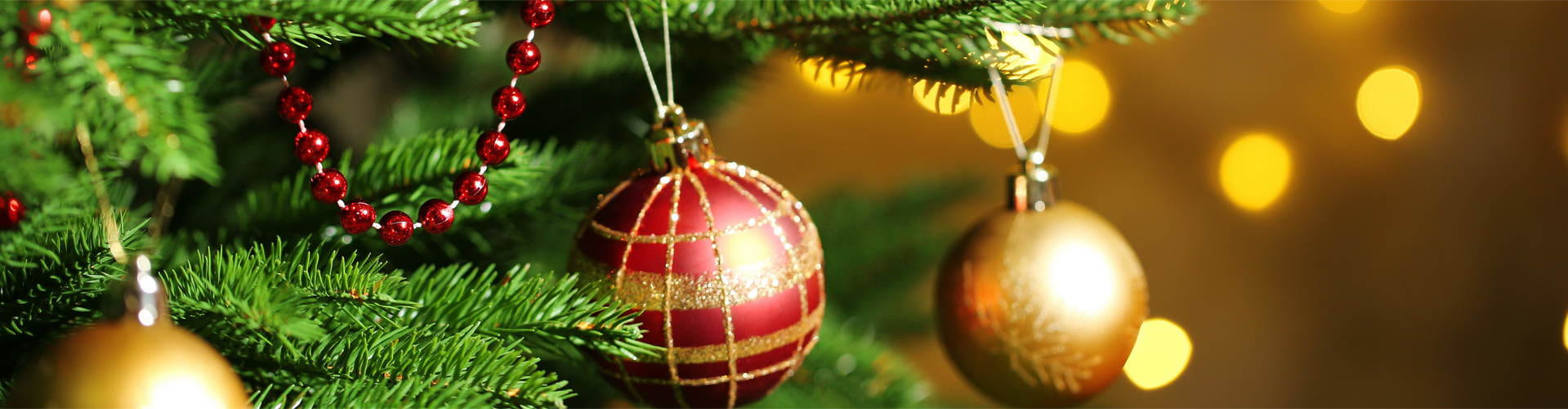 Как хранить новогоднюю елку  Как хранить новогоднюю елку novogodnyaya elka kak hranit